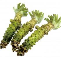 Wasabi Green Thumb