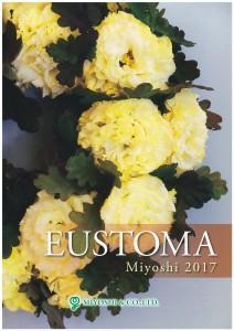 miyoshi-eustoma2017