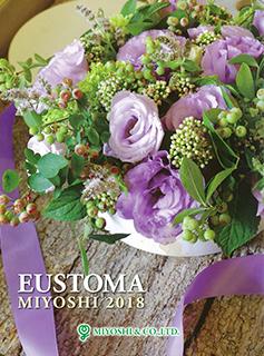 catalogue-eusttoma-thumb