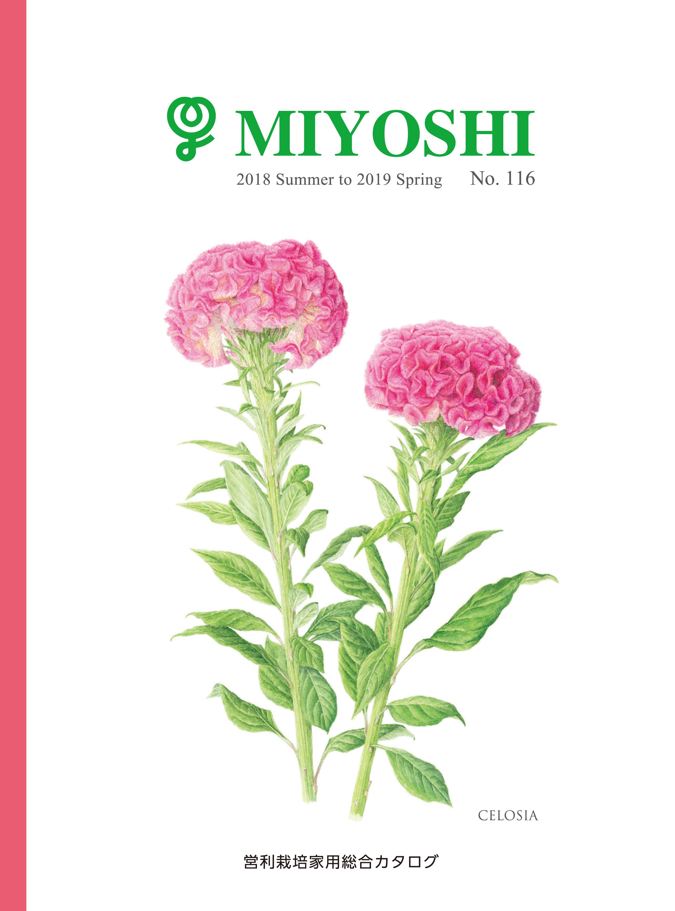 catalogue-miyoshi