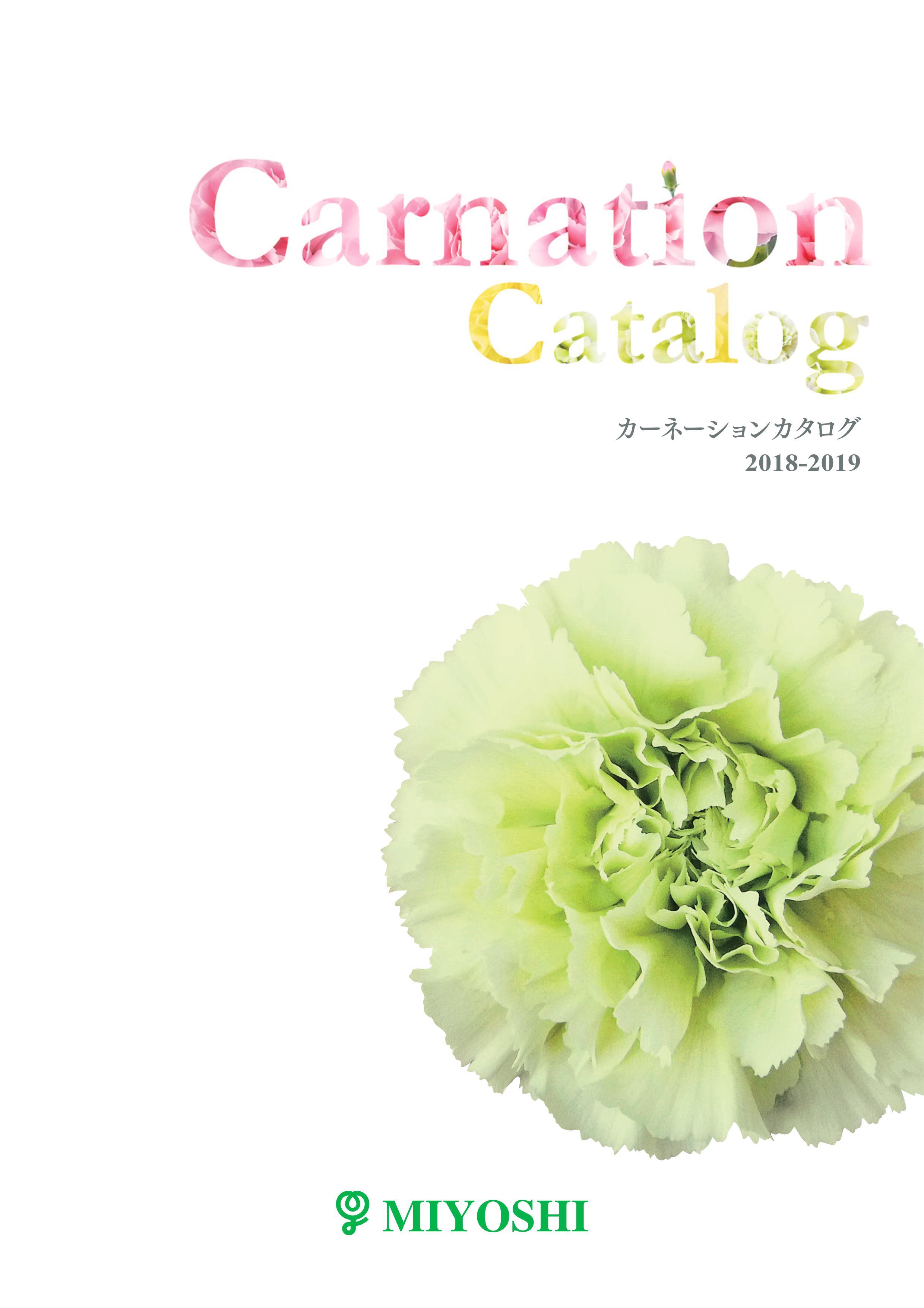 catalogue-carnation-thumb