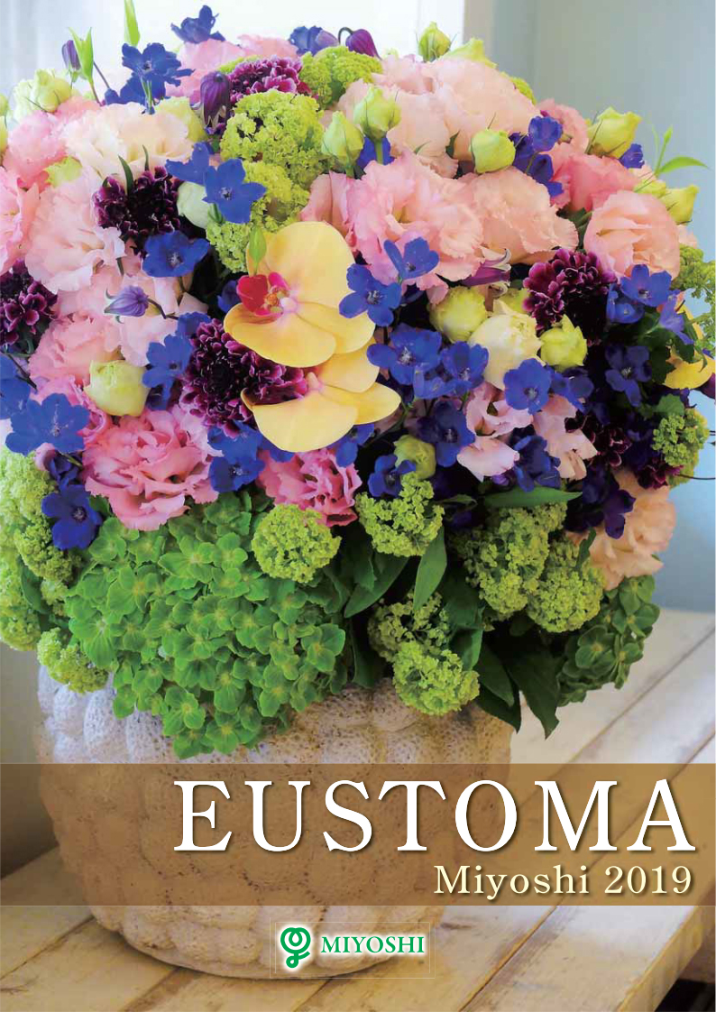 catalogue-eusttoma-thumb
