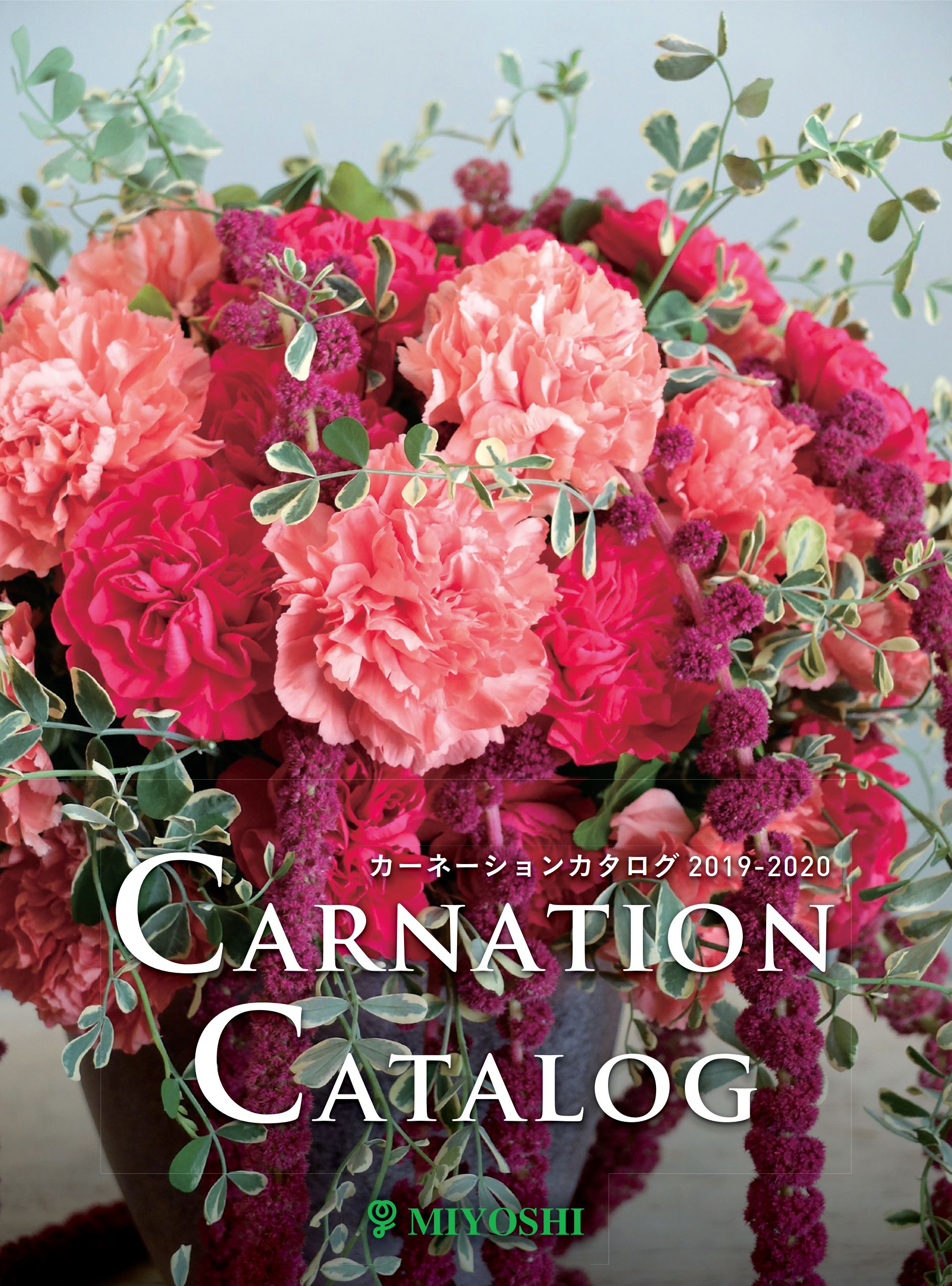 catalogue-carnation-thumb